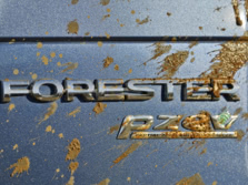 2015-Subaru-Forester-Badge-4-1500x1000.jpg
